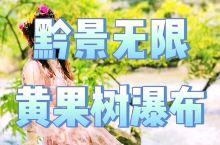 """黔景无限—黄果树瀑布 王阳明曾盛赞""""天下山水之秀聚于黔中"""", 贵州风光,旖旎多彩,黄果树瀑布群形态迥"""