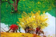 深秋的平武县·扒昔加古寨像穿了彩色的纱衣,美极了!