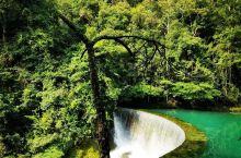 智者爱水,仁者爱山。我不是智者,我也不是仁者,但我却偏爱大自然的山山水水,在青山绿水、名山大川中找寻