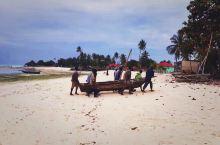 【丁香岛:桑给巴尔】  (在重新整理印度照片前,再说说坦桑尼亚吧!)  桑给巴尔岛是坦桑尼亚非洲大陆