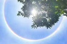 阳光下的日食