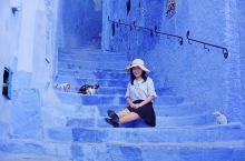 舍夫沙万——猫的天空之城,打卡Loney Planet封面的网红地。  仿佛调