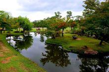 优美如画的奈良公园