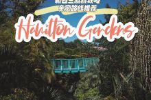 汉密尔顿花园(Hamilton Gardens):以人与植物的关系为主题,含5个主题花园系列,总占地