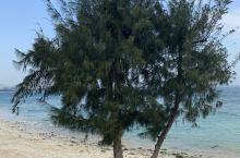 对面能看到海棠湾七星酒店亚特兰蒂斯 红树林。岛上只有一个珊瑚酒店,周边海质较好,空气清新,环境不错,