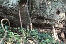 梅州平远县五指石风光,是广东著名的丹霞地貌旅游胜地,其五座石峰拔地而起,形如伸展的五指直刺云天,因而