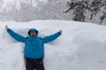 北海道的雪,会醉人