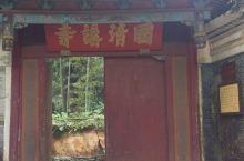 国清寺是天台山景区的景点之一,免门票,这里要赞一下浙江,浙江的景区很多是免门票,其余的景点票价也不高