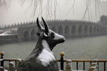颐和园的春雪