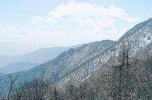 说走就走了的一场旅行  太白山绝对是个旅行的好地方  一山分四景  从开始的初春到夏日炎炎  秋林瑟