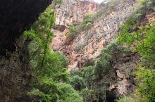 九乡境内森林茂密,覆盖率达62.3%,珍贵动、植物资源丰富。张口洞古人类居住遗址,代表了我国南方一种
