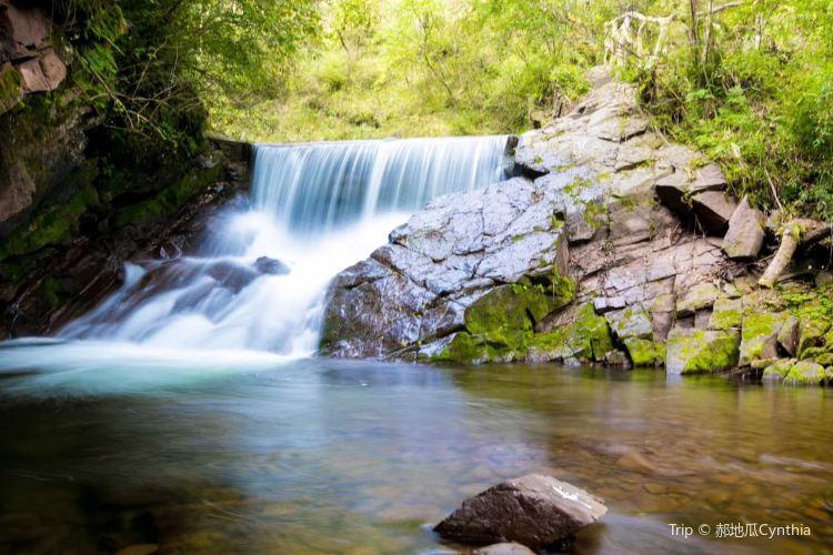 Liupanshan National Forest Park2