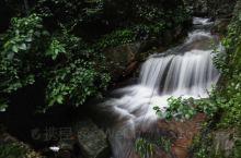 避暑圣地莫干山,让2019下半年从清凉开始,山中住几日挺好。图为剑池景区。