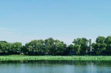 """圆明园,皇家御园因水而活,水上荷花是圆明园的夏季之魂。乾隆曾有诗赞:""""香远风清谁解图,亭亭花底卧双凫"""