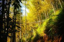 千泷沟大瀑布旅游区位于广州从化区良口镇锦村的一条峡沟,是个亲山、亲水、亲竹、亲石的旅游区。区纵深约3