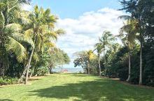 收集多地热带植物的美国大型热带植物园  【记得提前预约好导游】   The Kampong是一个非常
