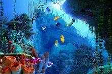 S.E.A.海洋馆 | 圣淘沙带你嗨翻天  踏足S.E.A.海洋馆,为奥妙多姿的海中奇境所震撼着迷。