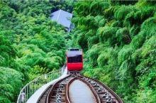 南山竹海之旅住超有格调和艺术感的民宿式酒店—芷岚秋。 吃完可心的早餐,驱车几分钟就到了南山竹海景区。