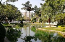 红河烟厂 公园景区般的环境
