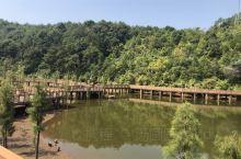 神光山国家森林公园,是4A级旅游景点,不要门票!