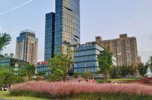 位于新建路隧道和大连路隧道之间的上海船厂滨江绿地,是在上海船厂整体搬迁后改建而成的。原锻机车间则作为