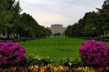 大学、大楼
