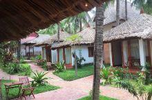 美奈是越南的一个小渔村,有绵长海滩,椰风海浪,水清沙幼,游人不多,不同档次的旅游度假屋众多,体验小茅