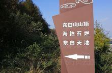 """东白山被称为""""浙中屋脊,会稽之巅""""!主峰为海拔1196米 的太白峰,据说是浙江最适合露营地点之一!"""