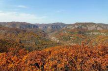 在陕西铜川有个美丽的香山,这个季节是最美的时候,五彩斑斓的叶子把正个山体渲染的如同水墨画一般,让人流