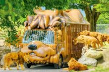 位在大分县宇佐市的九州自然动物公园,是日本最大级的野生动物园。搭乘园内动物造型的丛林巴士,可以餵食狮
