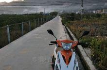 我家乡在贵州·榕江 榕江地质平坦,今天骑摩托车来田里摘菜,欢迎全国各地朋友来贵州榕江旅游,我们榕江人