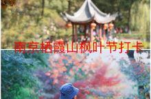栖霞山枫叶节美景