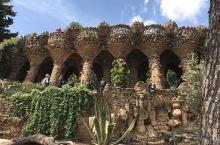 西班牙的巴塞罗那 圣家族大教堂 古埃尔公园 高迪之花青年旅馆 不去西班牙如何知道什么是热情似火?别样