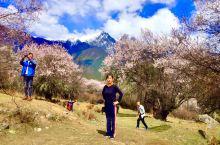 《光影·色彩》-西藏林芝