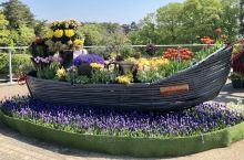 日本最大的花卉公园是在鸟取市,名为鸟取花廻廊。这里面积厐大、不同季节种有不同的花卉植物。冬季会有夜间