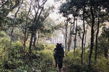位于尼泊尔的南部平原地带,在尼泊尔人心中,最值得他们骄傲的除了数不清的神灵之外,就是这片未被破坏、堪