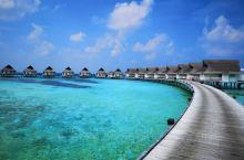 第一次来到马尔代夫就选择了中央格兰德岛,真的感觉非常幸运。简单说来就是吃住玩一价全包,性价比很高,1