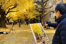【东京省钱攻略】东京大学银杏大道  一个不容错过的文化之旅。  春赏樱花秋冬赏银杏,在东京的上野公园