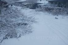 冬天最爱的雪