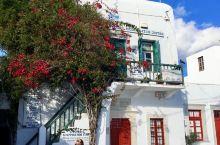 2019 1月希腊米科诺斯岛 希腊蜜月之旅 米岛也属于希腊三大名岛之一,跟圣岛和扎岛相比算比较小的岛
