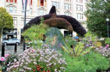 四季花开复随,庭园造景更是令人叹为观止,现在的布查特花园内包括秀丽的低洼花园、幽静雅致的日本花园、优