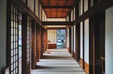 日本旅行 | 东京周边小众历史感日式庭院get  茨城县水户市的弘道馆曾经是日本最大的藩校,江户幕府