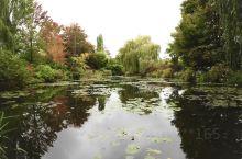 这里是莫奈花园,是这位印象派大师的故居,也是老先生画出巨作睡莲的地方,看看这一池莲花,也就知道那一系