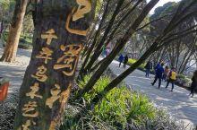 都江堰·成都  怀着无比激动的心情来到了这个有着悠久历史文化的地方,巴蜀风情 ,让人流连忘返,回忆绵