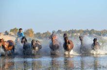 乌兰布统(克什克腾旗)——草原民族又号称马背上的民族。男男女女都是策马扬鞭驰骋在乌兰布统大草原上。冷