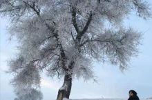 哈尔滨雪乡长白山六日游 南方长大的小孩对雪都有一种执念! 时间:2019.12.31-2020.01