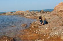 离开河口胶东渔村,沿着环海路往回走,看见海边很多礁石,于是停车观赏。没曾想,却与礁石上生长的海蛎子不