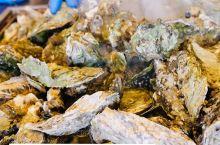日本宫城县盐灶市 盐灶牡蛎小屋的牡蛎畅吃  如果喜欢吃牡蛎,冬季来宫城县旅游,一定要试试这家牡蛎小屋
