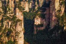 张家界两日游攻略(超实用!) 在张家界的游览分为张家界国家森林公园(武陵源核心景区)和位于张家界市区