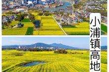 """空中俯瞰湖州市长兴县小浦镇高地村,金黄的油菜花田交织着错落的民居犹如一条春天的""""地毯""""铺在大地上。"""
